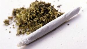 consumo_cannabis