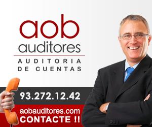 Auditores de Cuentas